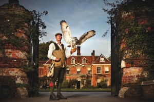 Lainston House Hotel Falconry
